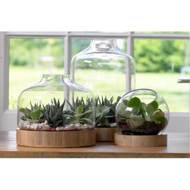 Cosy & Trendy Florarium met Houten Basis 24 x 21,5 x h 21cm