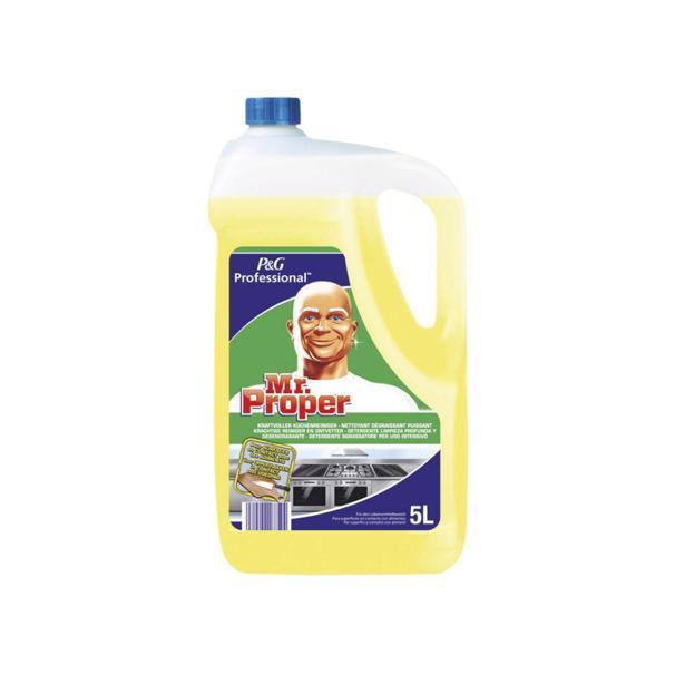 Mr. Proper Krachtige Reiniger en Ontvetter Professional