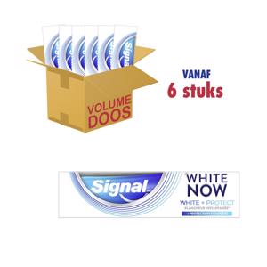 Signal Tandpasta White now - White & Protect 8717163738092